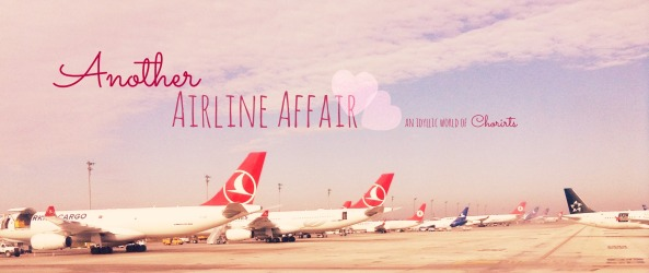 Another Airline Affair