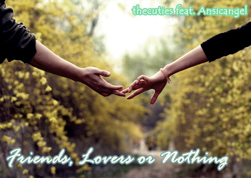 friends, lovers or nothing poster